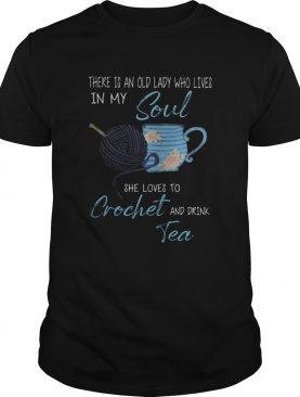There is an old lady who lives in my soul she loves to crochet and drink tea shirt