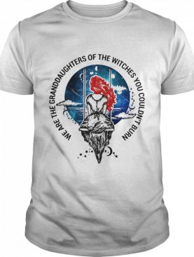 We are granddaughters of the witches you couldnt burn shirt