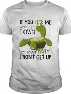 Turtle If You Kick Me When I Am Down You Better Pray I Don't Get Up shirt